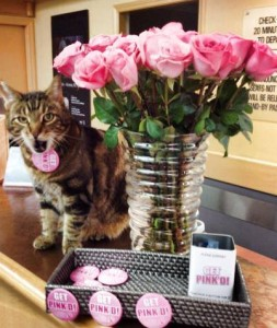 Rotor Cat celebrated 'Get Pink'd Day' 2014
